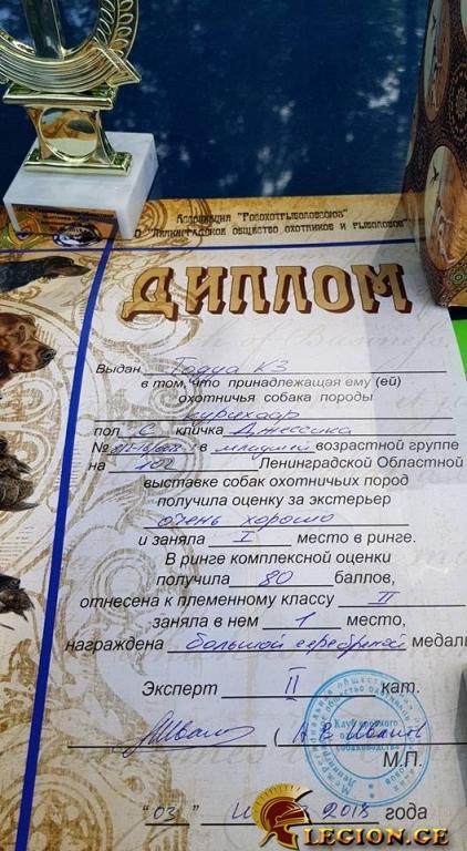 legion.ge-1064-1528716909.jpg