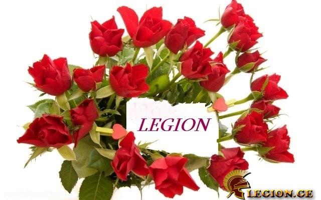 legion.ge-8-1520063530.jpg