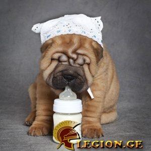 legion.ge-82-1516274735.jpg