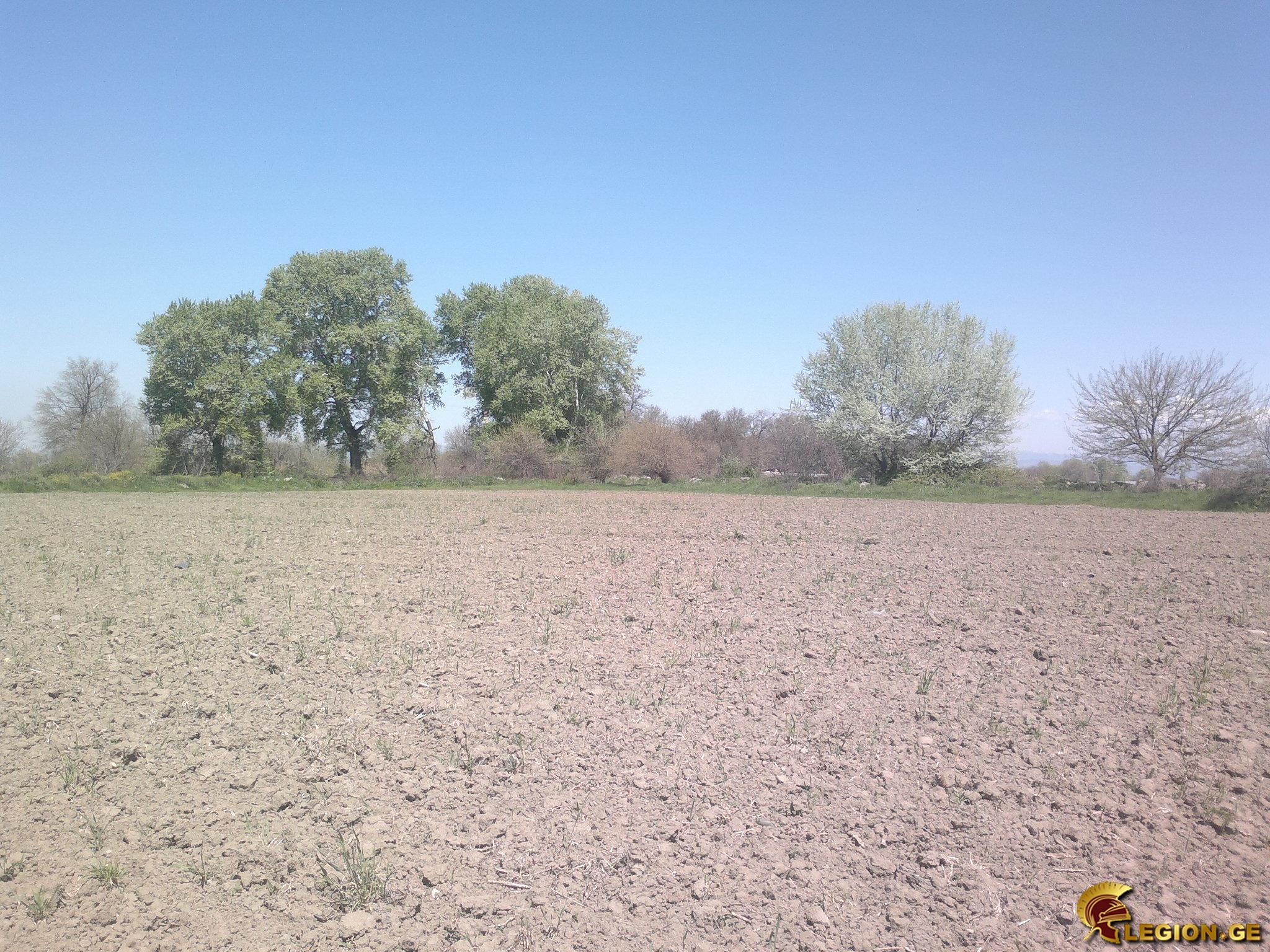 pre_1429474405__180420153105.jpg